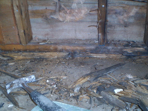 Help Rotted Wall Joists Wall Frame Plates Subfloor